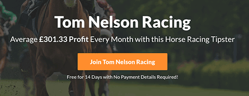 Tom Nelson Racing Review